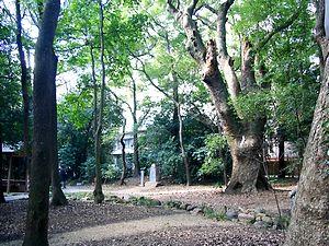 生田の森.jpg